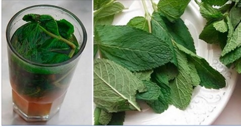 mint-leaves-liver-detox