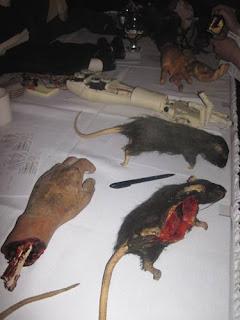 Hands & Rats.