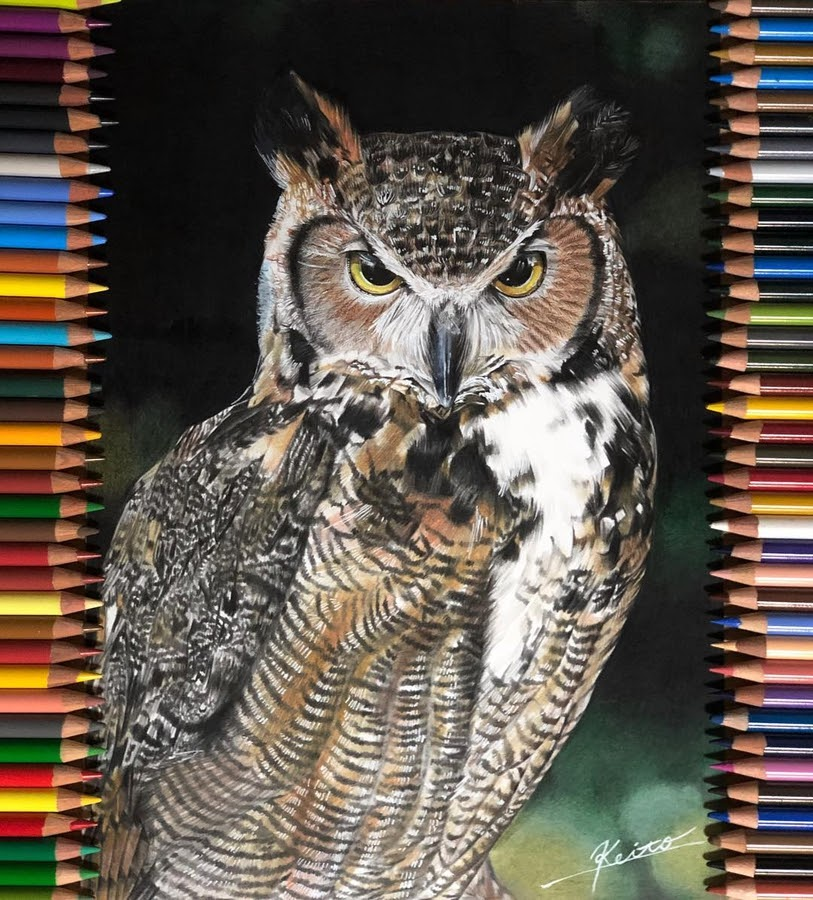07-Owl-with-a-stern-look-Keito-www-designstack-co