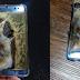 Al quemarse su batería Samsung retira el S7 del mercado
