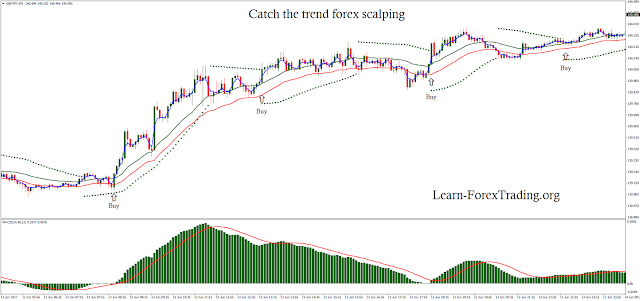 Catch the trend forex scalping