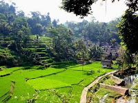 Kampung Naga, Kampung Adat di Tasikmalaya, Pegang Teguh Tradisi dan Kearifan Lokal