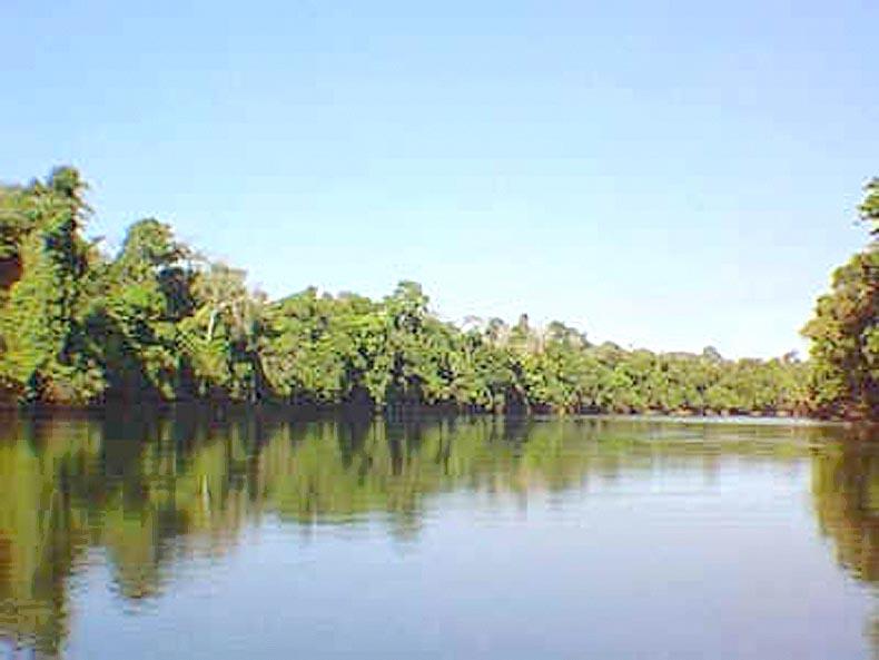 Rio Jamari | Rondônia