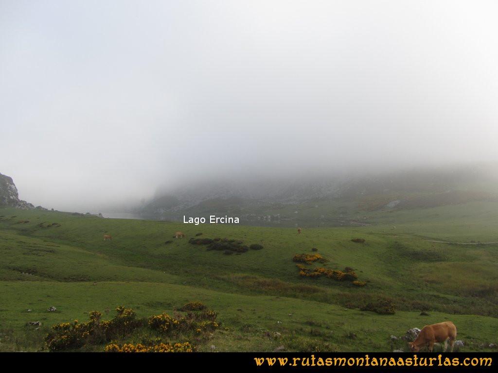 Ruta Ercina, Jultayu, Cuvicente: Llegando de la majada de Belbín al Lago Ercina