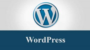 Learn-Complete-WordPress-for-Building-a-Professional-Sites-www.myekonet.com_-300x169
