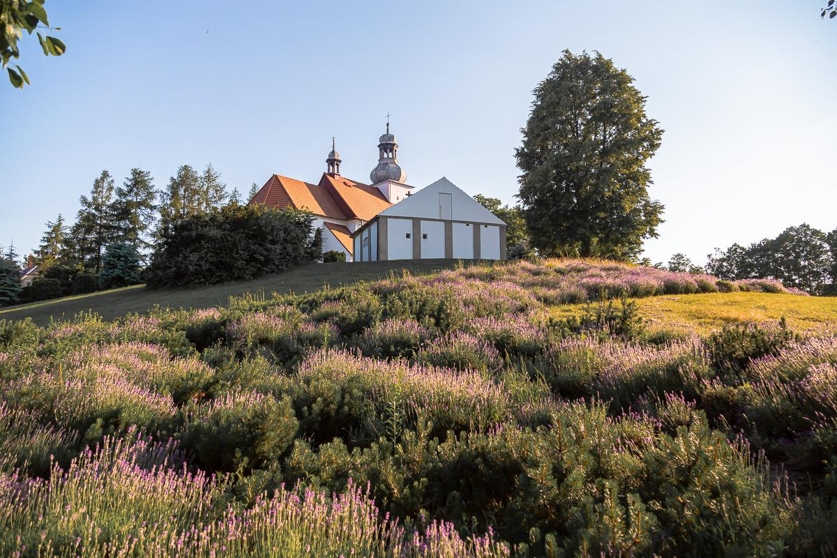 urokliwy kościół położony na wzgórzu