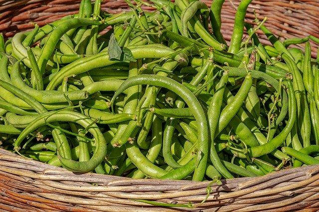 Green Bean Meal - Vegan