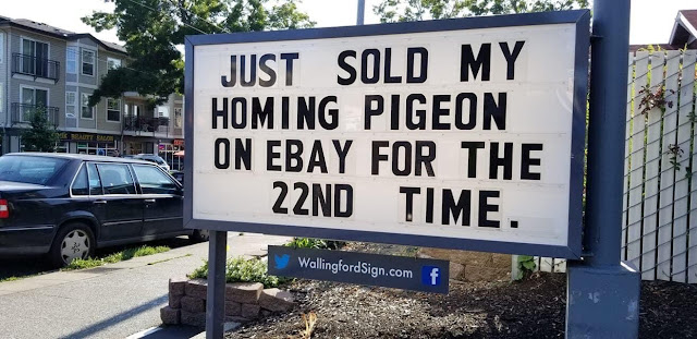 Just sold my homing pigeon on eBay for the 22nd time