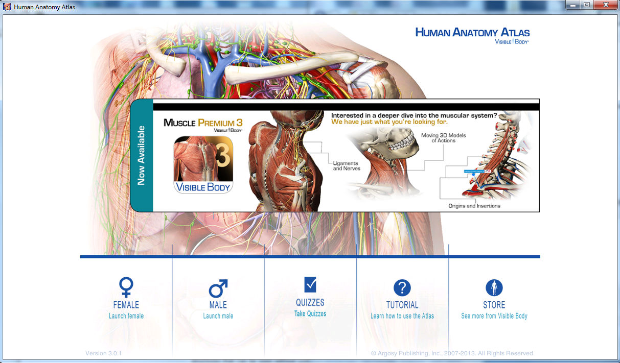 Human Anatomy Atlas for PC -Unlocked Software-(Visual Anatomy ...