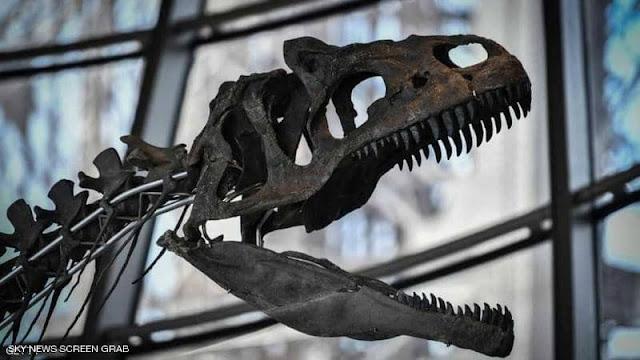 """أخيرا.. علماء يكتشفون """"قاتل الديناصورات"""""""
