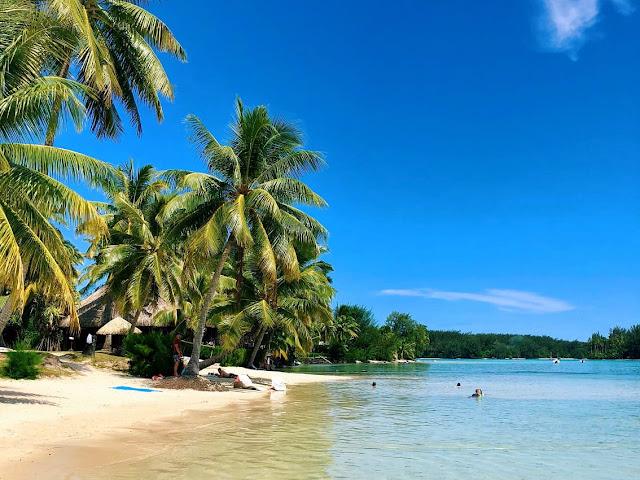 dicas viagem polinésia francesa