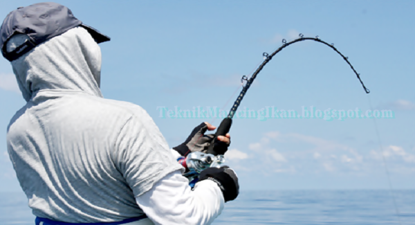 Teknik Mancing Ikan
