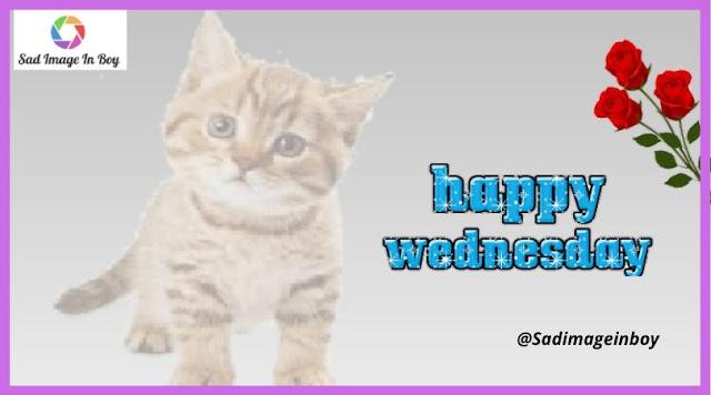 Happy Wednesday images | happy wednesday images, wonderful wednesday images, wednesday blessings images