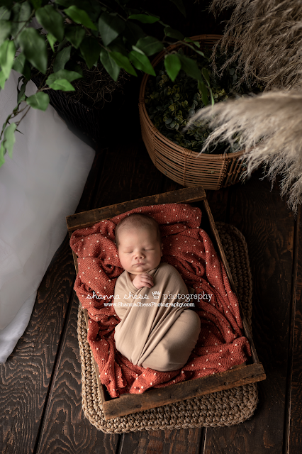Newborn photography Eugene OR, baby boy in rust wrap asleep in wooden bed