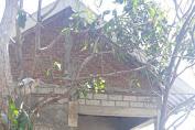 Binter Terpadu Kodim Loteng Bangun 15 Unit Rumah, Dandim Berikan Apresiasi
