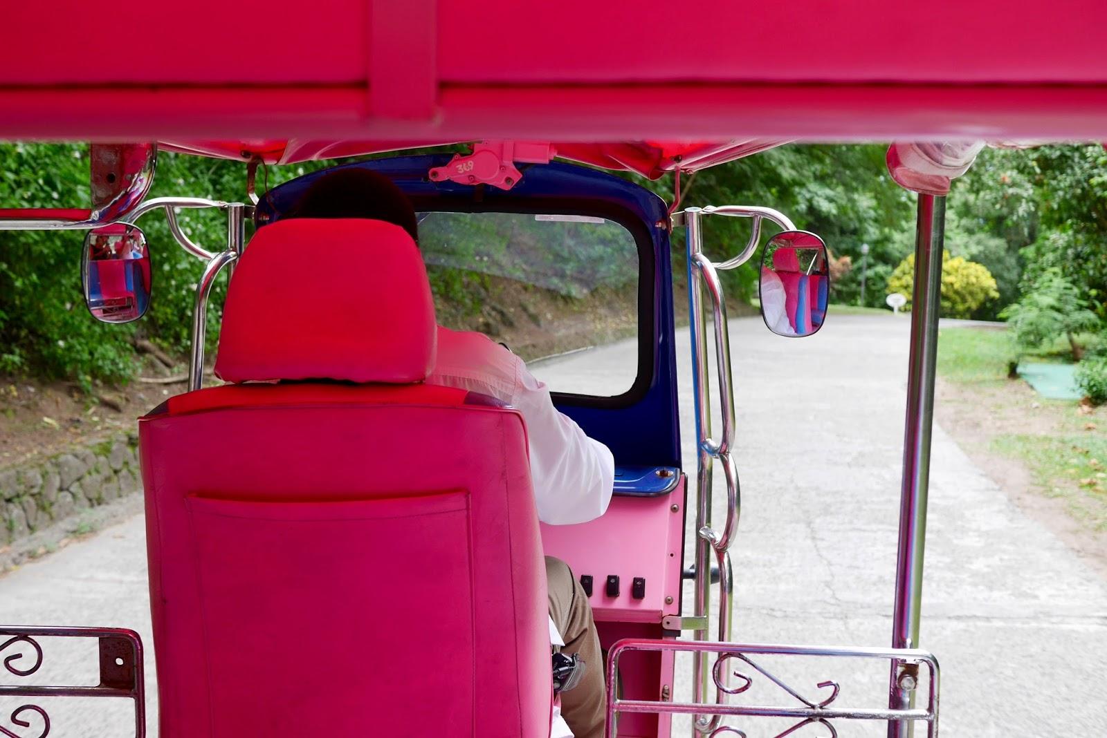 Pink golf cart, sugar beach, Soufrière, St Lucia by www.CalMcTravels.com