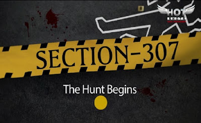 SECTION 307 movie Wiki