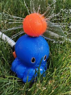 Dollar Tree's Unbranded Octopus Balancing Ball sprinkler, from Dollar Tree, spraying water every which way