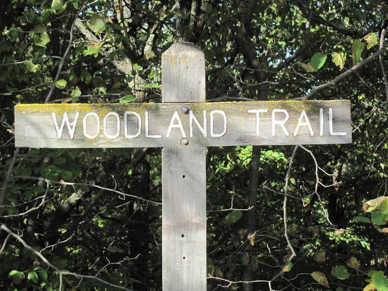 Hiking Sioux Falls  Newton Hills State Park  Woodland Trail