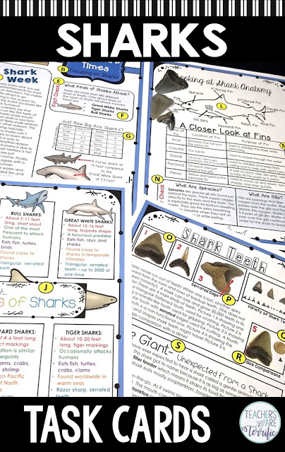 If it's shark week for you this blog post will give you some ideas! Includes tips and resources that will help you make it a great study of sharks. #STEM #elementary