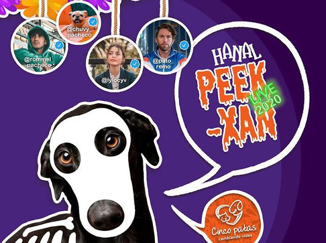 Anuncian el Octavo Hanal Peek Xan 2020 en su modalidad online