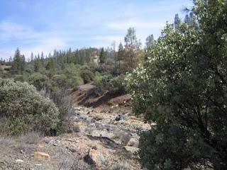 San benito - benitoita - california - foro de minerales