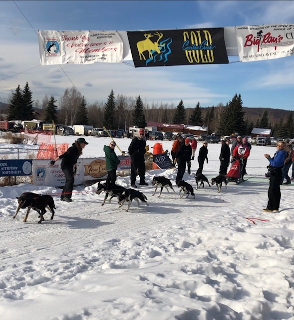 Dog sled team leaves starting line at Mushers Hall (Source: Palmia Observatory)