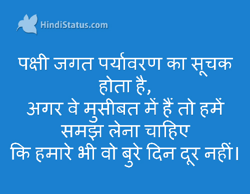 Animals In Trouble Hindi Status The Best Place For Hindi Quotes