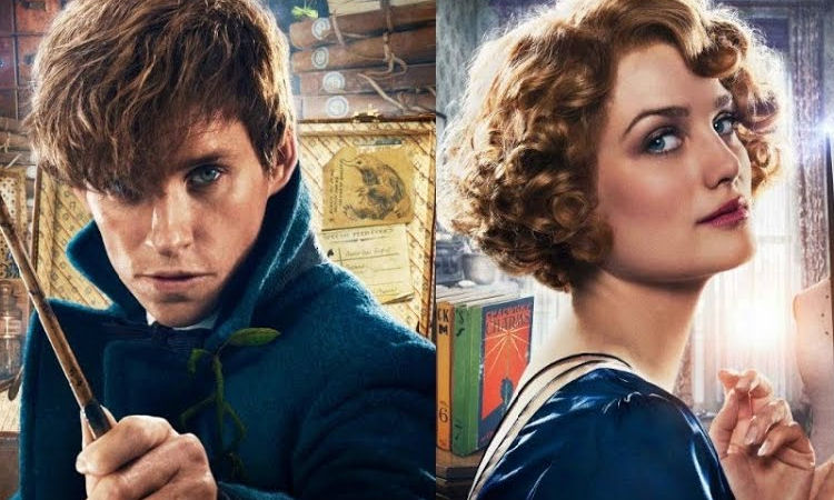 A Quick Guide to 7 'Fantastic Beasts and Where To Find Them' Characters