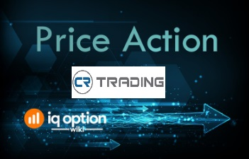 Options trading practice software