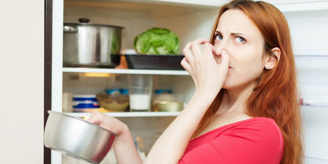 Tips dan Kiat Membersihkan Kulkas