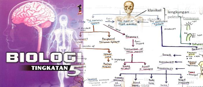 Download nota ringkas biologi tingkatan 5 online