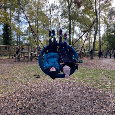 Sandringham Estate playground swing