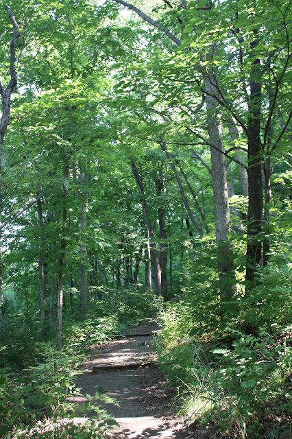 Rustic path at Pere Marquette State Park