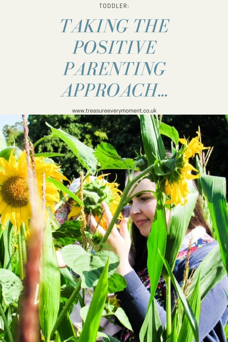 TODDLER: Taking the positive parenting approach...