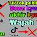 """TikTok"" ban || What is causing the value of ""TikTok"" is decreasing? - ""thesamir"""