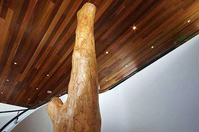 tree trunk supporting ceiling