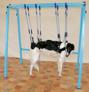 fisioterapia de suspensão de articulação