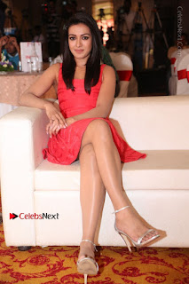 Actress Catherine Tresa Unveils Intex Air Conditioners  0164.jpg