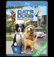 COMO PERROS Y GATOS 3: PATAS UNIDAS (2020) FULL 1080P HD MKV ESPAÑOL LATINO