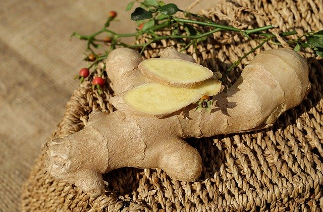 rempah tanaman herbal