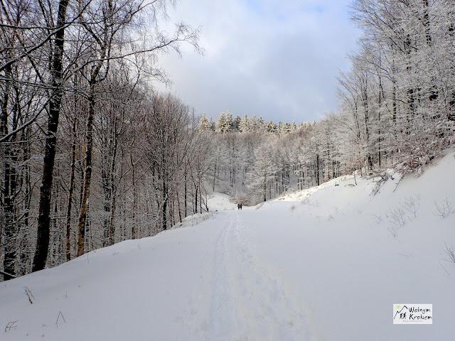 Góry Sowie Zimą - Kalenica
