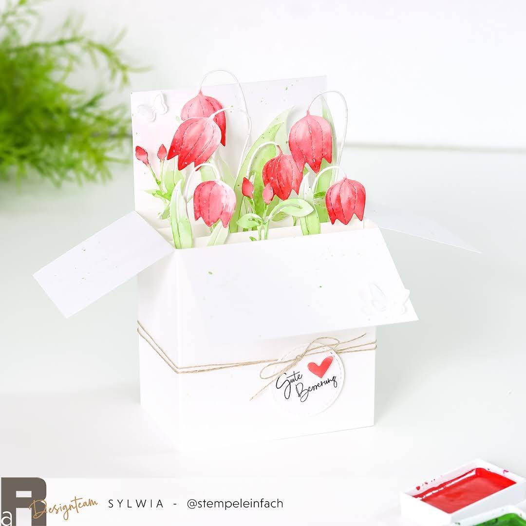 card in a box-illarius-renke