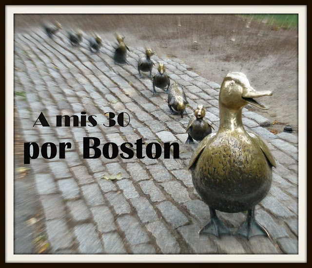 Patitos del Boston Garden