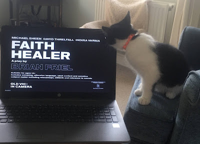 "photo shows an open laptop, the screen is balck with the words ""Faith Healer"" in large white capital letters, below which in smaller type reads 'a play by Brian Friel' To the right of the laptop a black and white kitten is sitting on a blue chaor , the kitten is looking at the laptop screen and it's head obscures one corner of the screen"