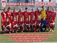 FC Magura 2012 Bacau (Pisicile Rosii)