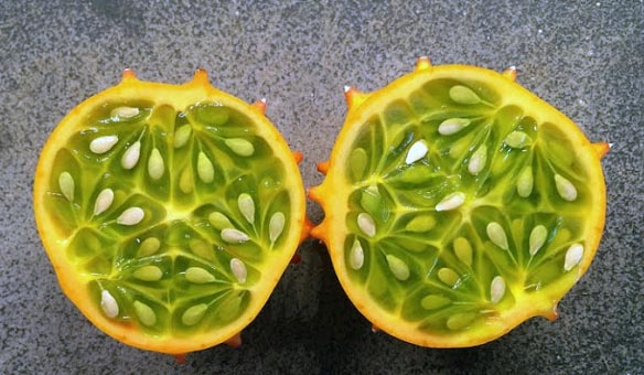 Fruit of African Horned-Melon