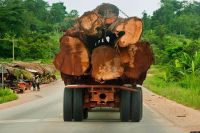 Ghana risks importing Timber from Liberia – Lumber Traders warn
