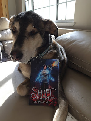 Alaskan Husky looking decidedly unexcited about the copy of Shift Happens resting on him