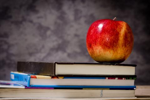 Literacka 5! vol. VIII - pięć lektur szkolnych wartych przeczytania